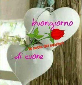 Buongiorno amore mio bellissime immagini 7