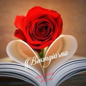 Buongiorno amore mio immagini 2