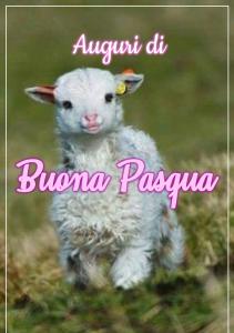 agnellino auguri di buona Pasqua 1555446230