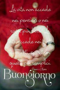 buongiorno amore 14